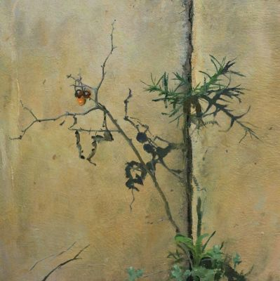 Martin Dimitrov - Horse Nettle Berries